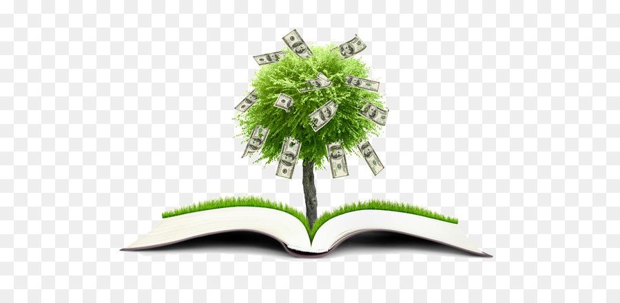 Money Coin Finance Wallpaper