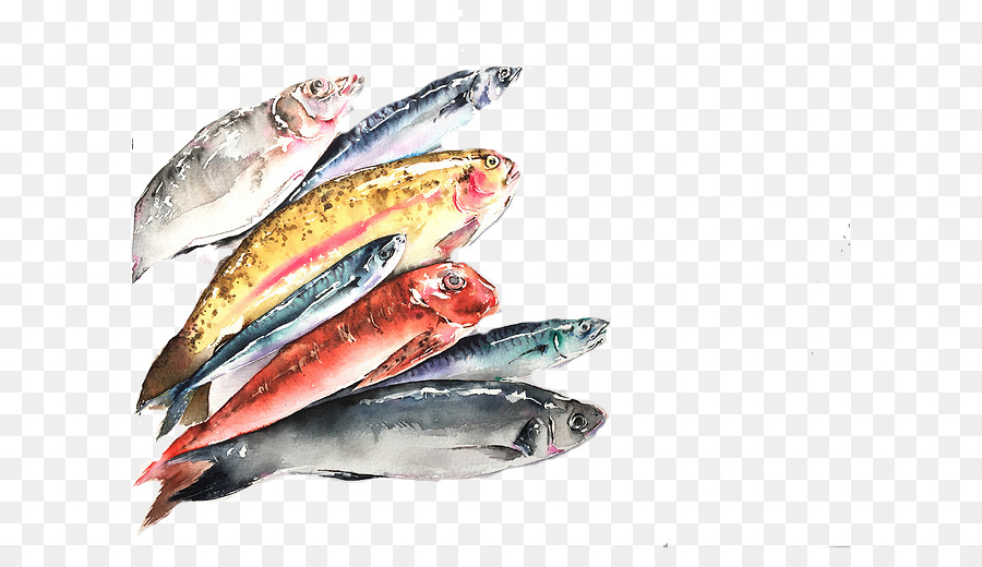 pacific saury sardine fish products mackerel oily fish colored