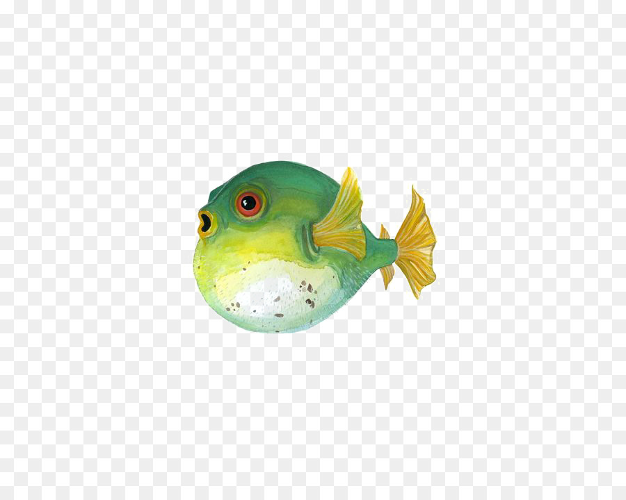 Fugu Painted fish Painting Illustration - Puffer fish png download ...