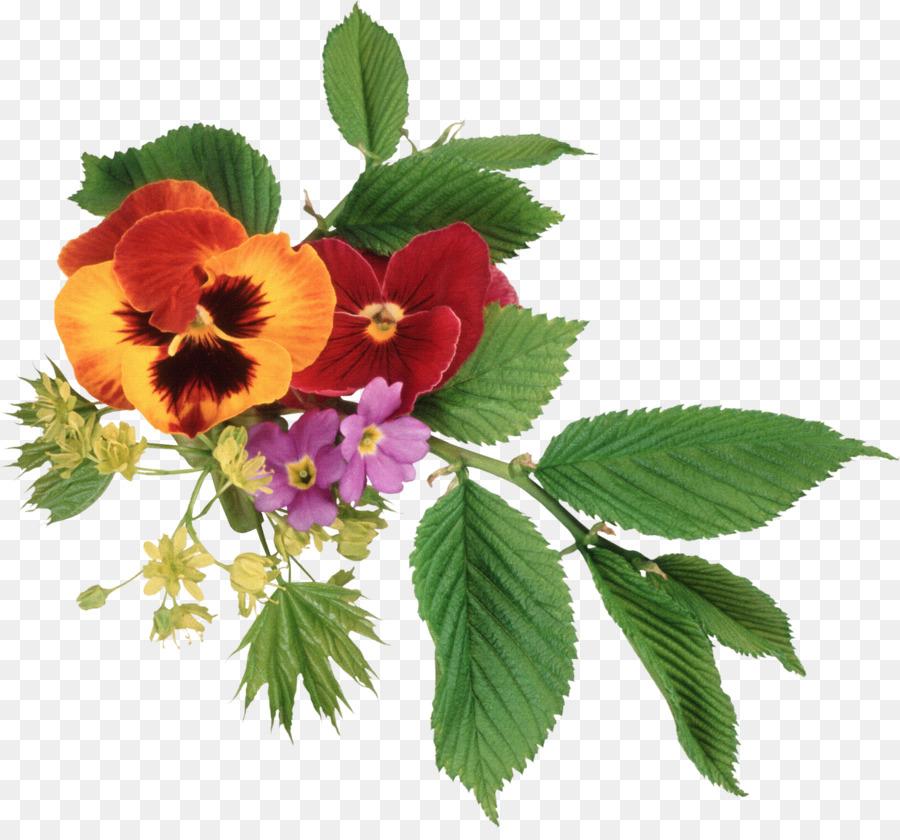 Pansy Flower bouquet Clip art - Flowers element floral patterns ...
