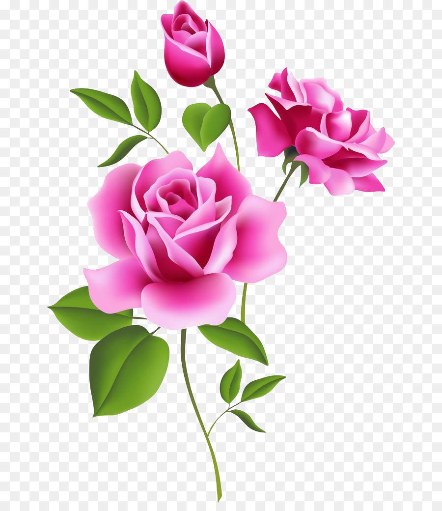 Rose Pink Flower Free Content Clip Art Floral Decoration Pattern