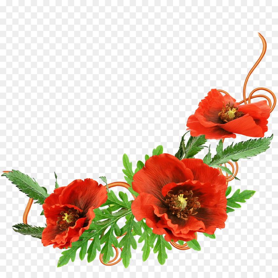 Picture frame Photography - Red floral decoration pattern png ...