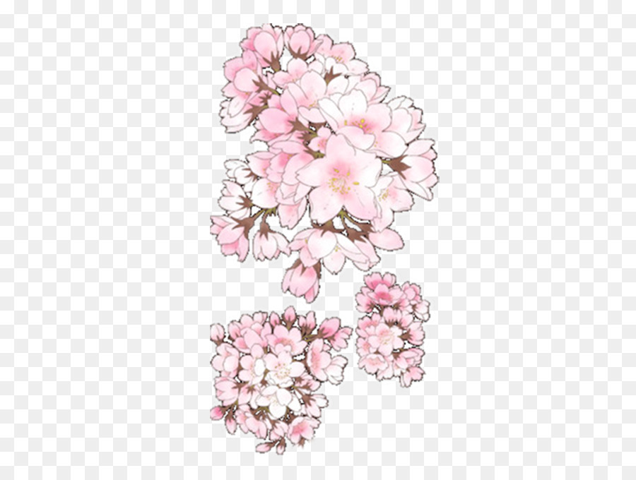 Jinhae floral design cherry blossom drawing pretty cherry png jinhae floral design cherry blossom drawing pretty cherry mightylinksfo
