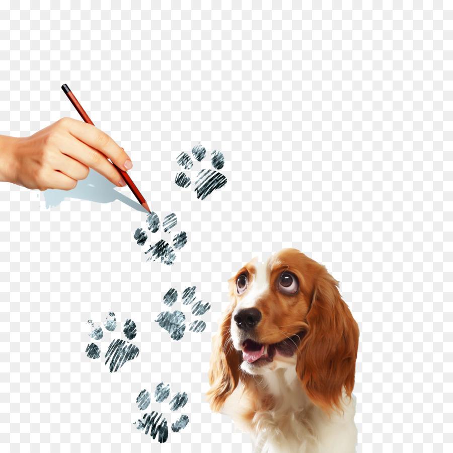 Beagle Yavru Köpeğin Paw Illüstrasyon El Boyaması Köpek Yazdırır