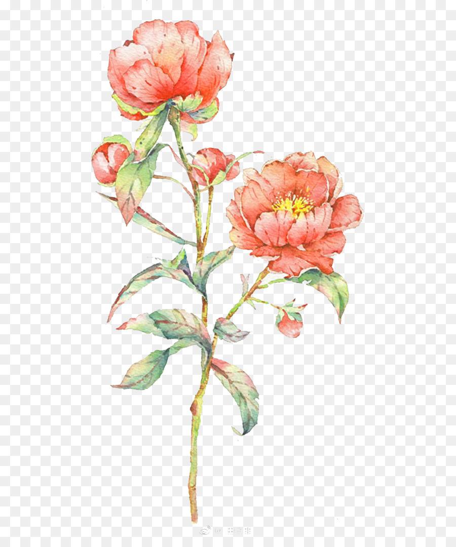 çiçekler Suluboya Suluboya Suluboya çiçek Boyama Suluboya çiçek