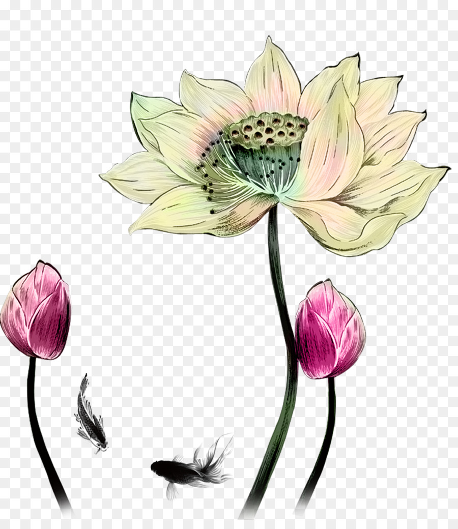 Drawing Designer Hand Painted Oil Painting Lotus Png Download