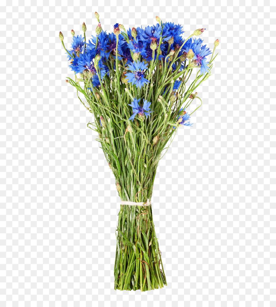 Floral design cornflower flower bouquet the cornflower bouquets floral design cornflower flower bouquet the cornflower bouquets are free of charge izmirmasajfo