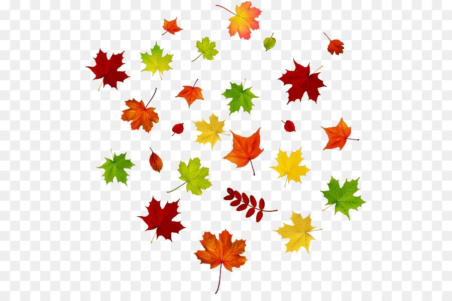 La hoja de arce del Otoño el color de la hoja - Arce de hojas de ...