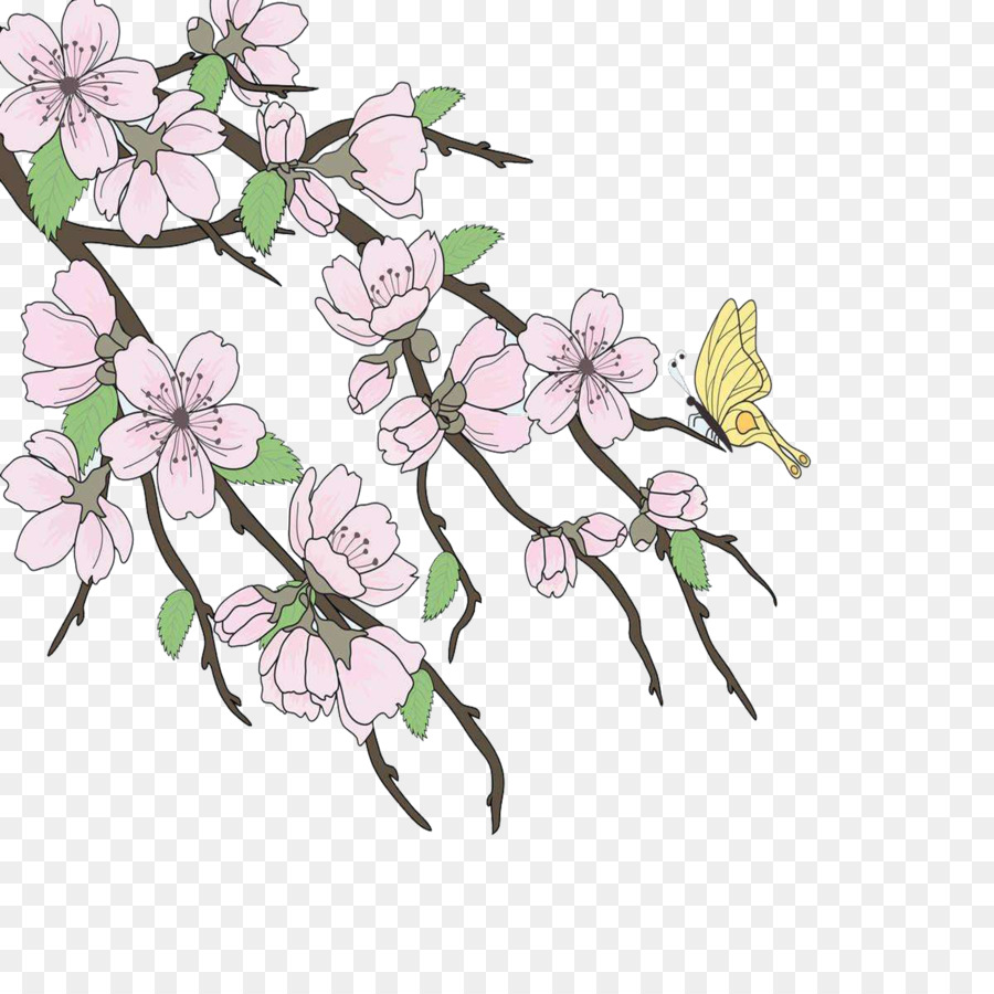 Cherry Blossom Drawing Branch Beautiful Hand Painted Cherry Trees
