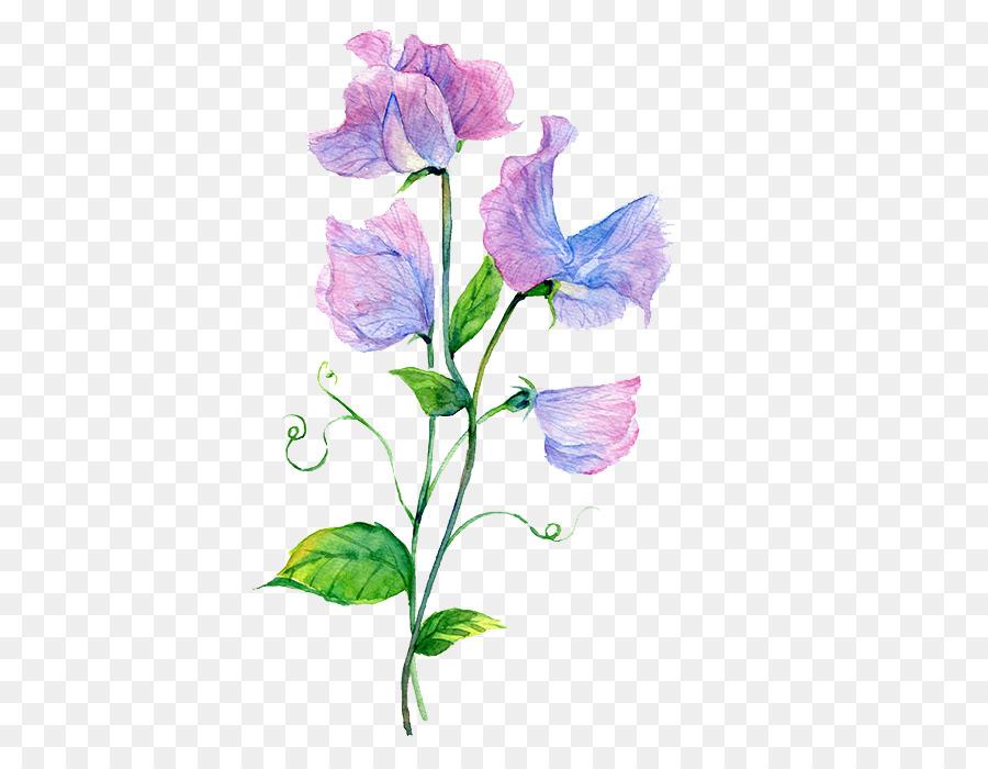 Purple Watercolor Flower png download - 464*700 - Free