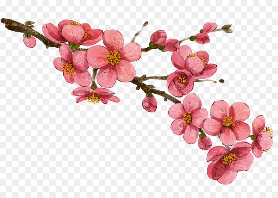China Flower Drawing Ilration Plum