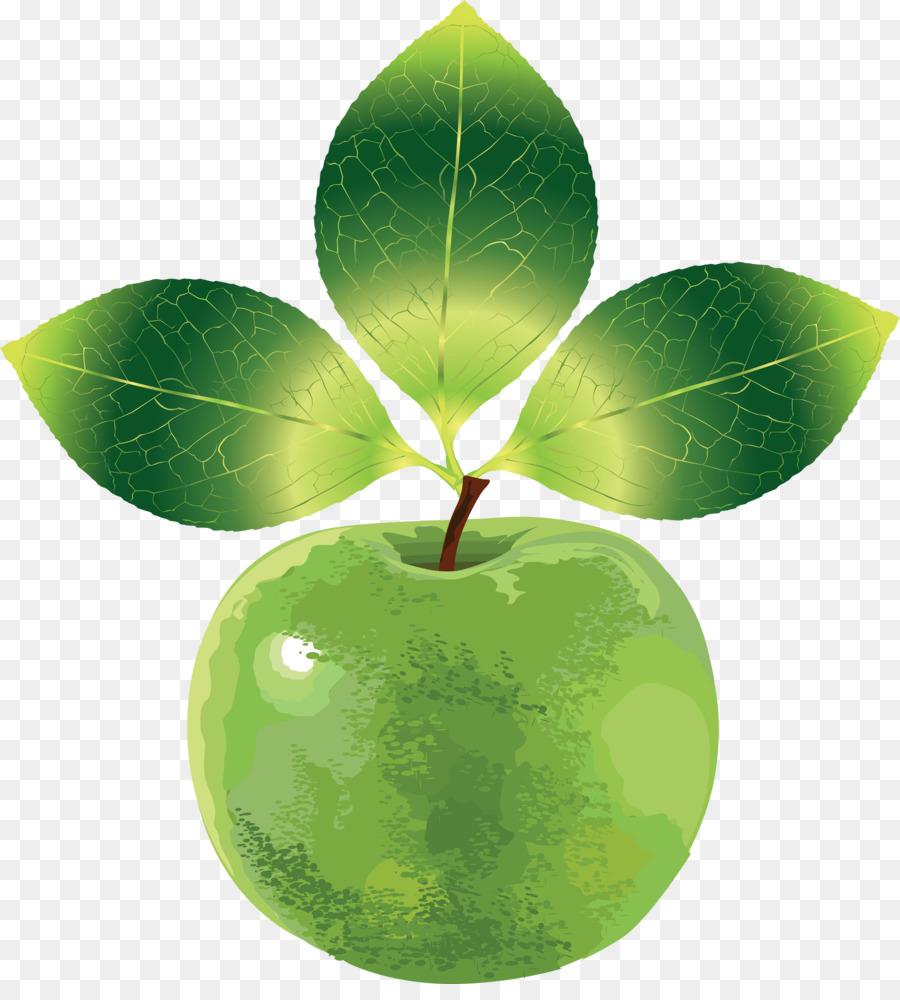 euclídea del vector de apple 3d de dibujos animados de frutas