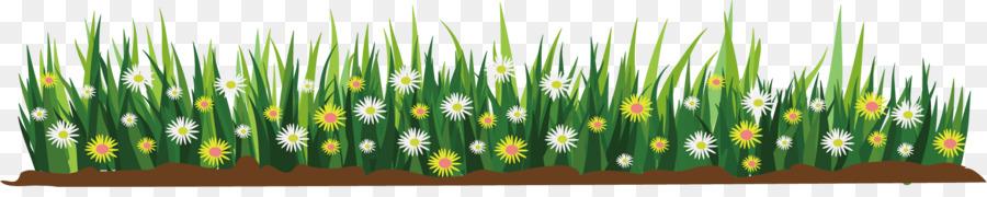 Flower Cartoon Illustration Sketching Flower Flat Png Download