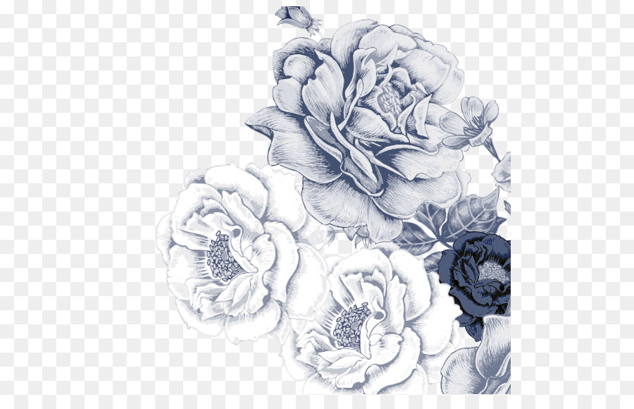 Line Drawing Of Rose Plant : Beach rose paper flower bouquet wallpaper vector videos png
