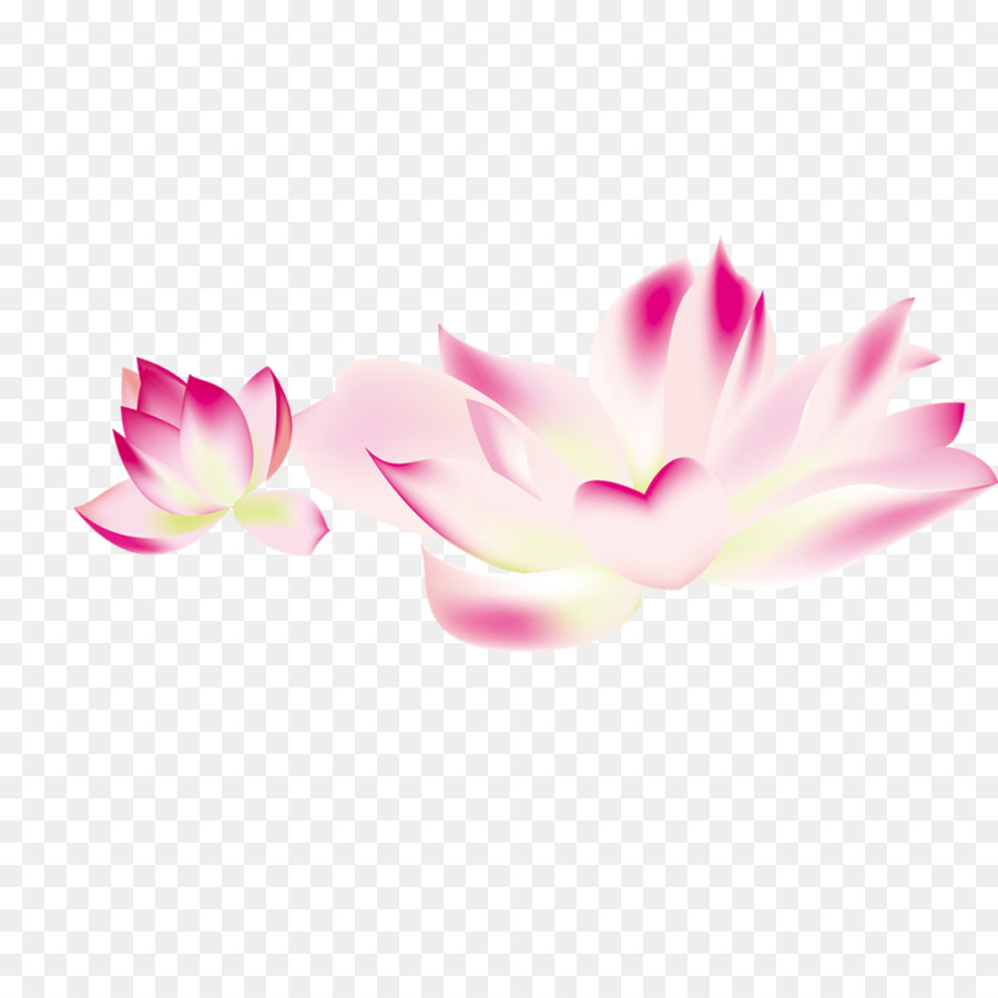 Flower Clip Art Lotus Png Material Png Download 11811181 Free