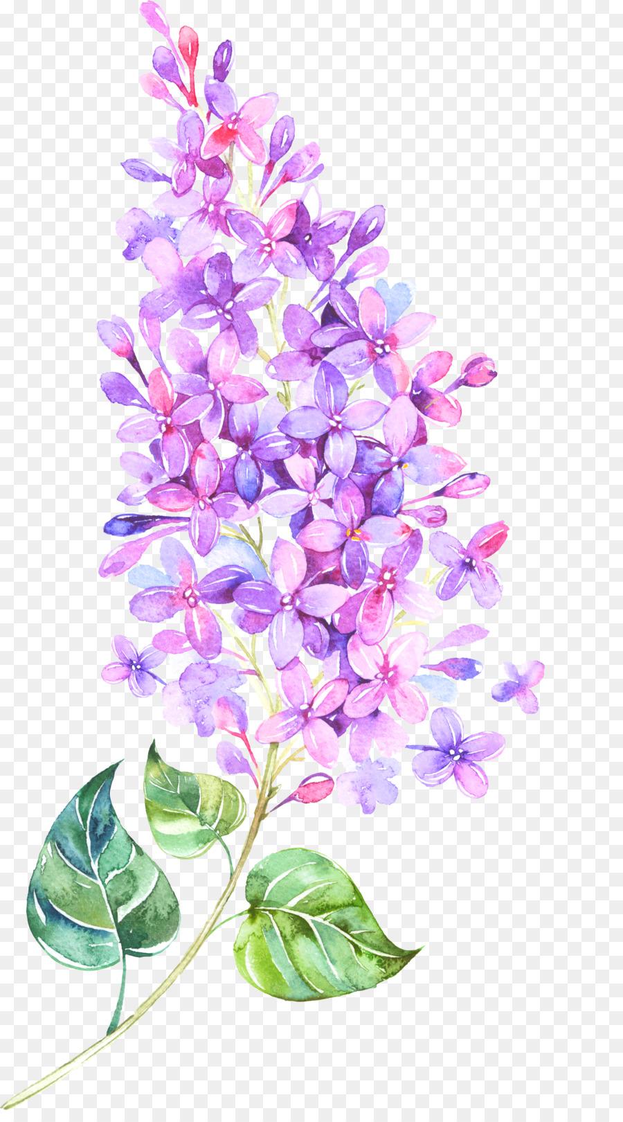 Flower Lilac Violet Clip Art Floating Flower Png Download 1968