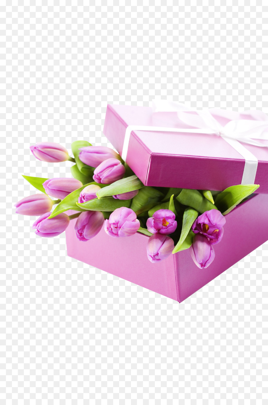 Tulip Gift Flower bouquet Box - Tulips and gift wrapping png ...