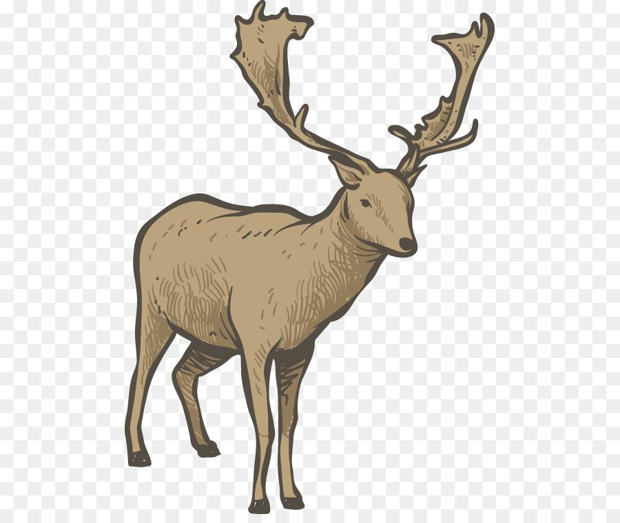 Christmas Reindeer Png.Christmas Reindeer Drawing Png Download 537 747 Free