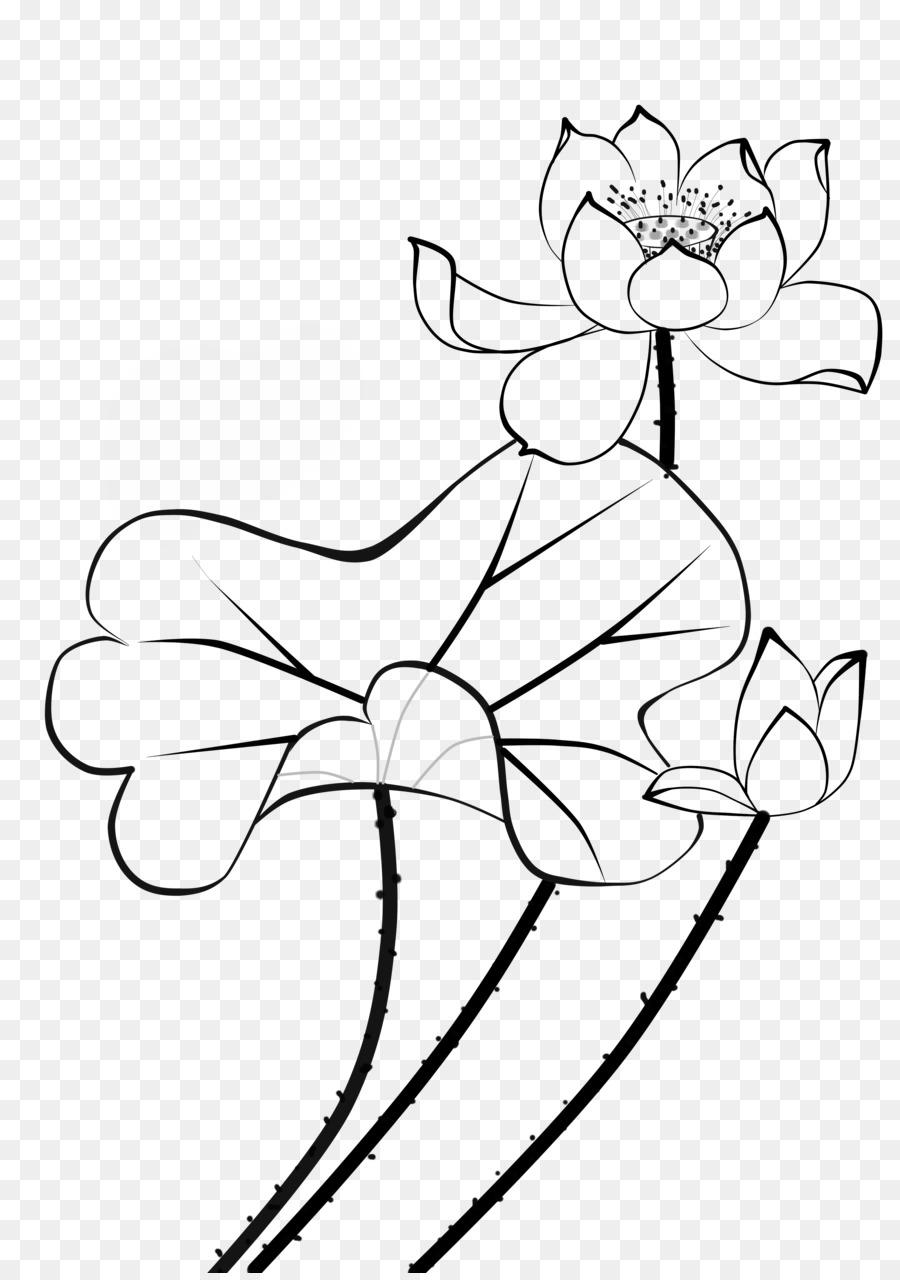 Nelumbo nucifera water lilies flower stroke petal lotus graphic nelumbo nucifera water lilies flower stroke petal lotus graphic design izmirmasajfo