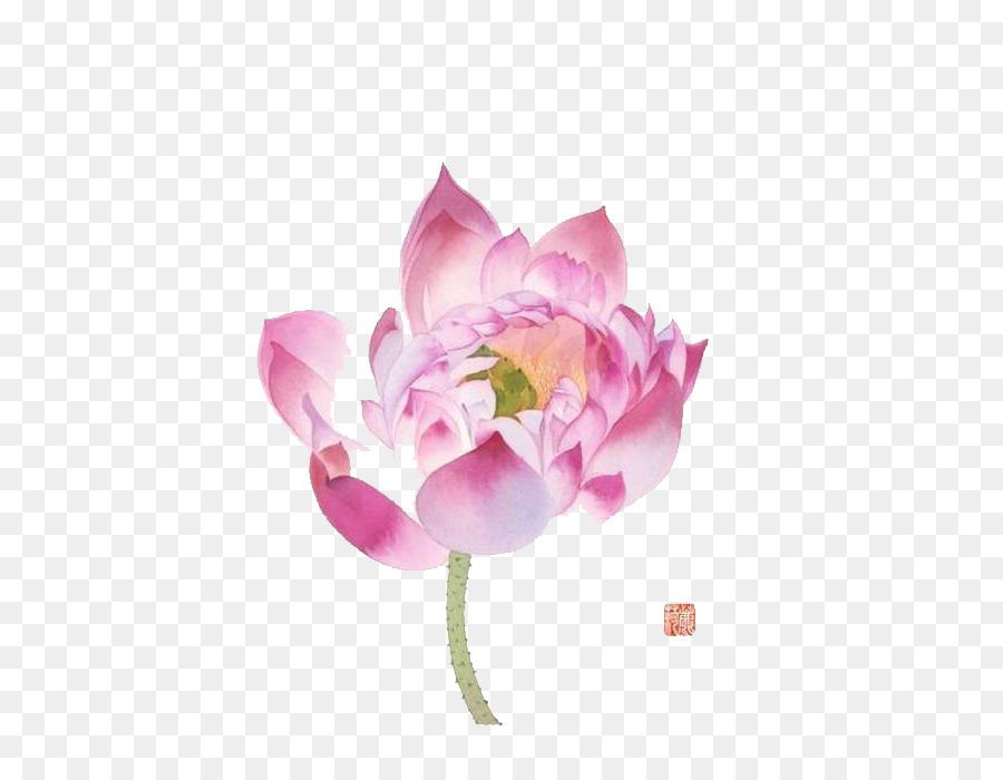 Acuarela Ilustración De Dibujos Animados Pintado A Mano De Lotus