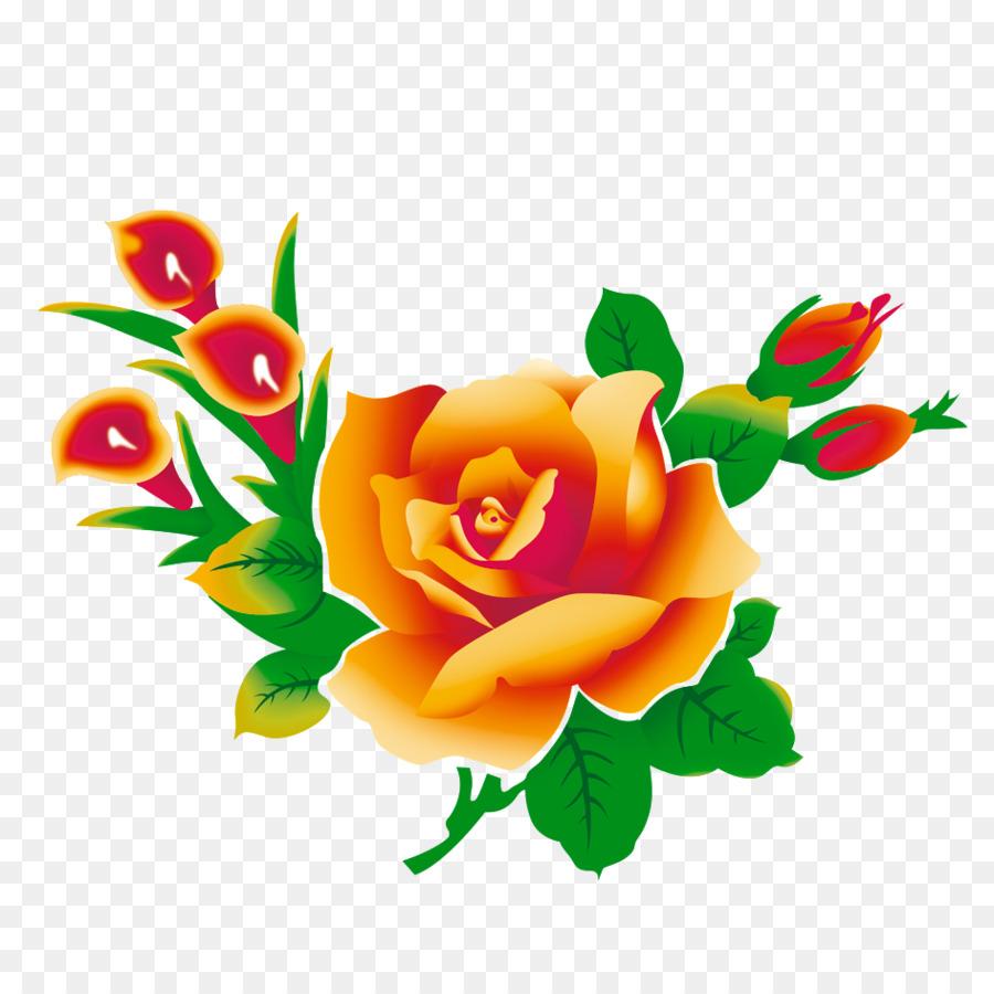 Beach rose Flower High-definition television Clip art - Orange ...