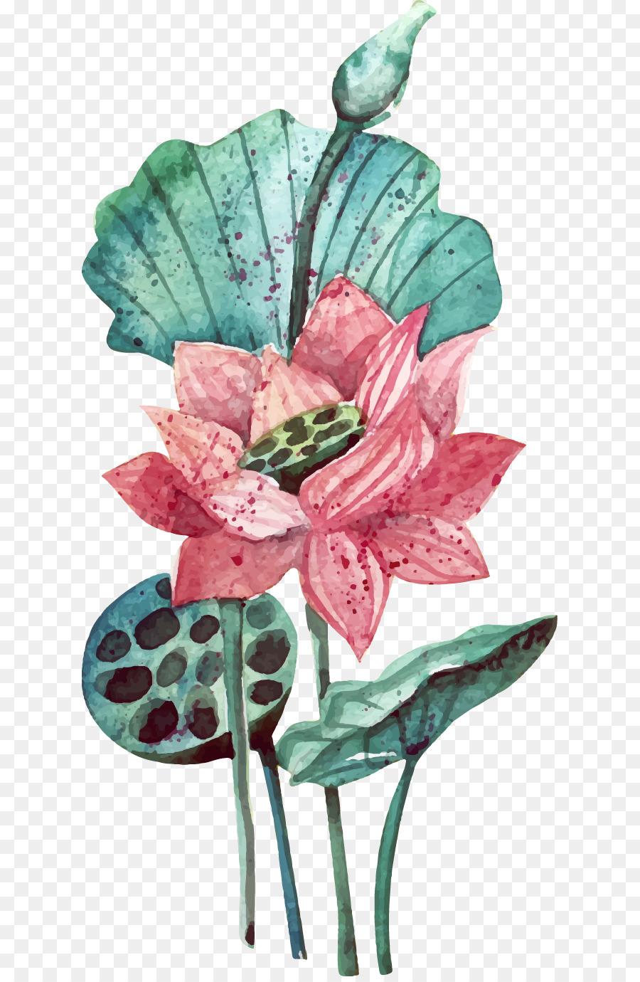 Watercolor Painting Flower Vector Hand Painted Lotus Lotus Png