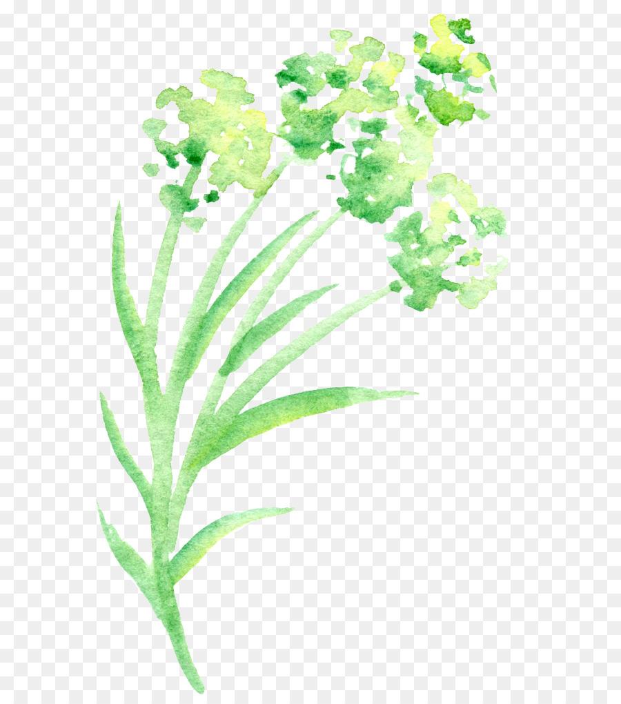 Verde Pétalo de la Acuarela de Flores - Simple green acuarela floral ...
