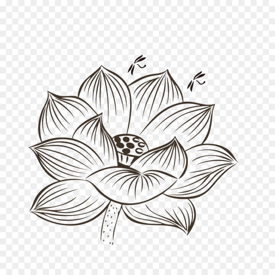 Nelumbo nucifera drawing black and white painting hand painted nelumbo nucifera drawing black and white painting hand painted lotus izmirmasajfo