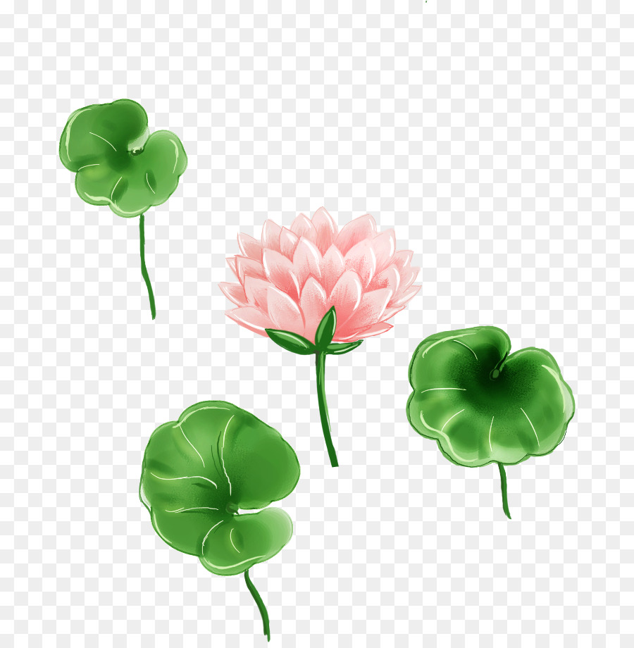 Leaf Cartoon Cartoon Painted Lotus Fresh Lotus Leaf Png Download