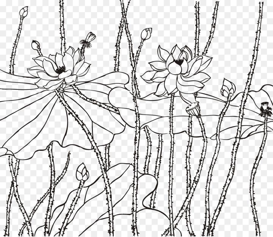 Nelumbo Nucifera çizim Hat Sanatı öklid Vektör çin Rüzgar Boyama
