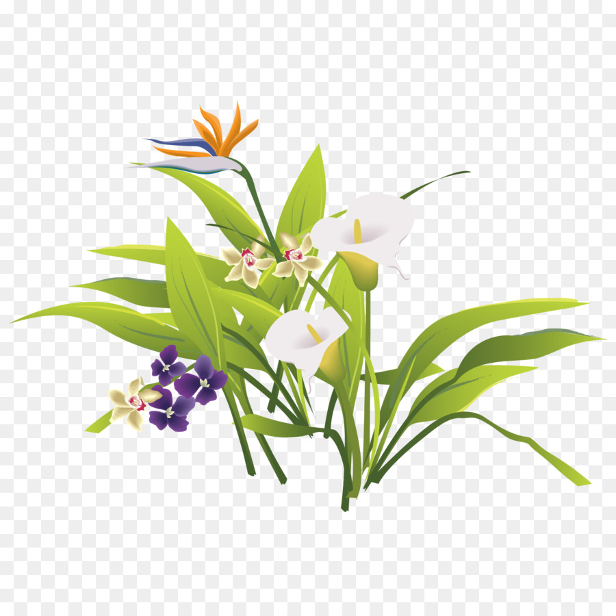 Floral Design Flower Bouquet Vector Fresh Green Leaves Of Grass
