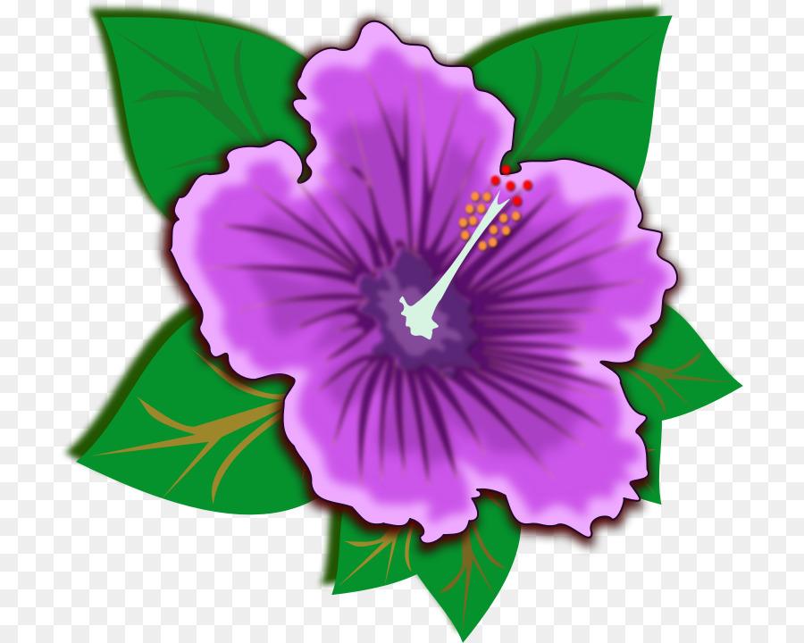 Hibiscus Schizopetalus Flower Purple Clip Art Hibiscus Cliparts