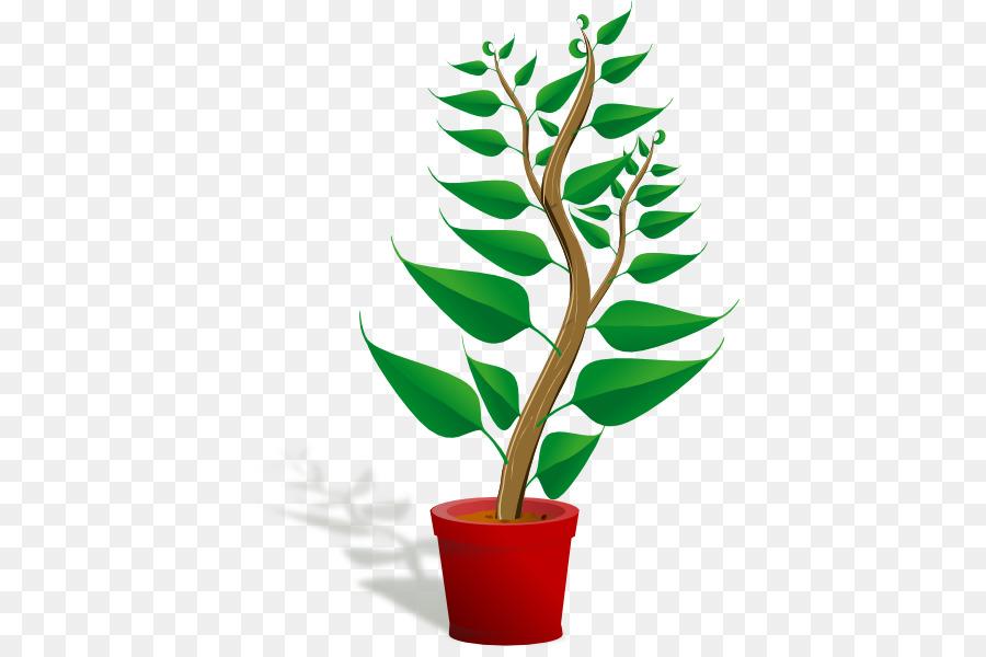 Plant Plant png download - 450*592 - Free Transparent Plant png