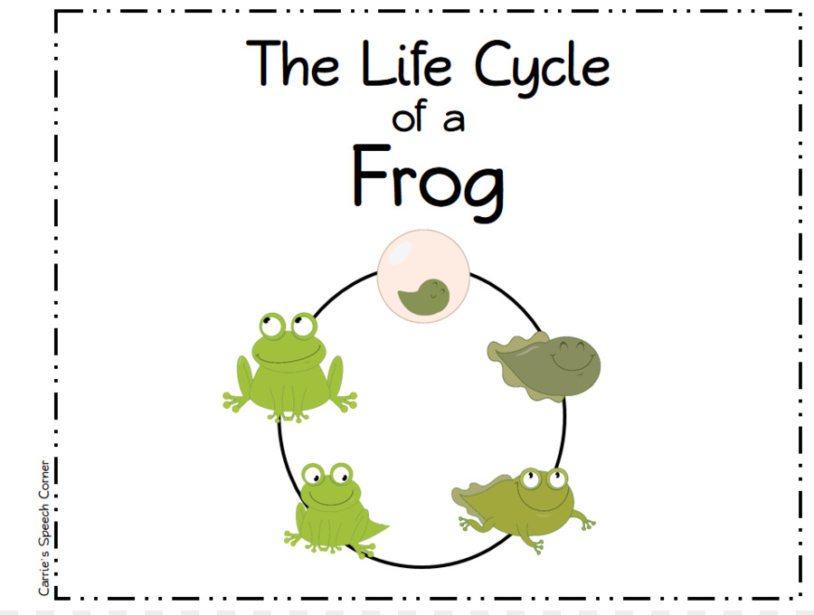 Image result for life cycle frog clip art