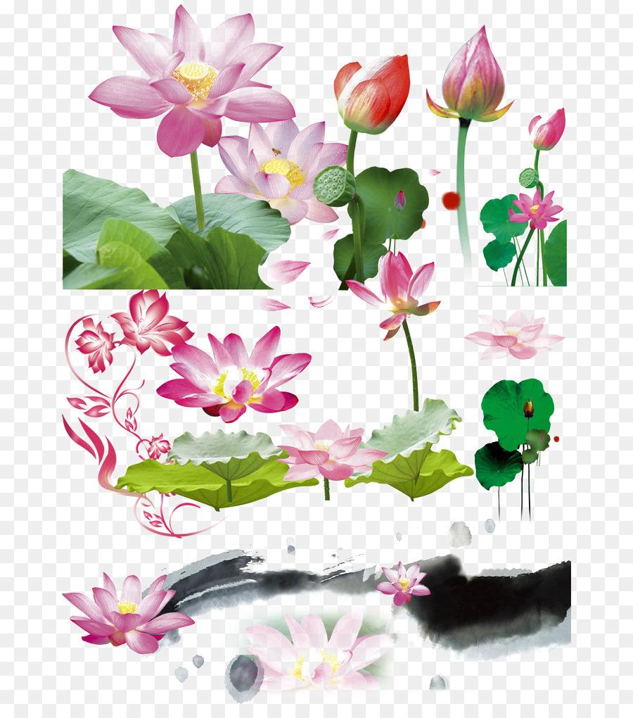 Download Leaf Adobe Illustrator Computer File Pink Lotus Lotus