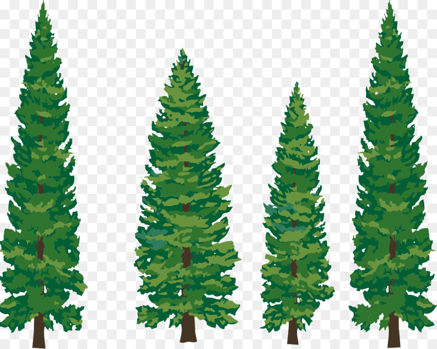 Eastern White Pine Tree Clip Art