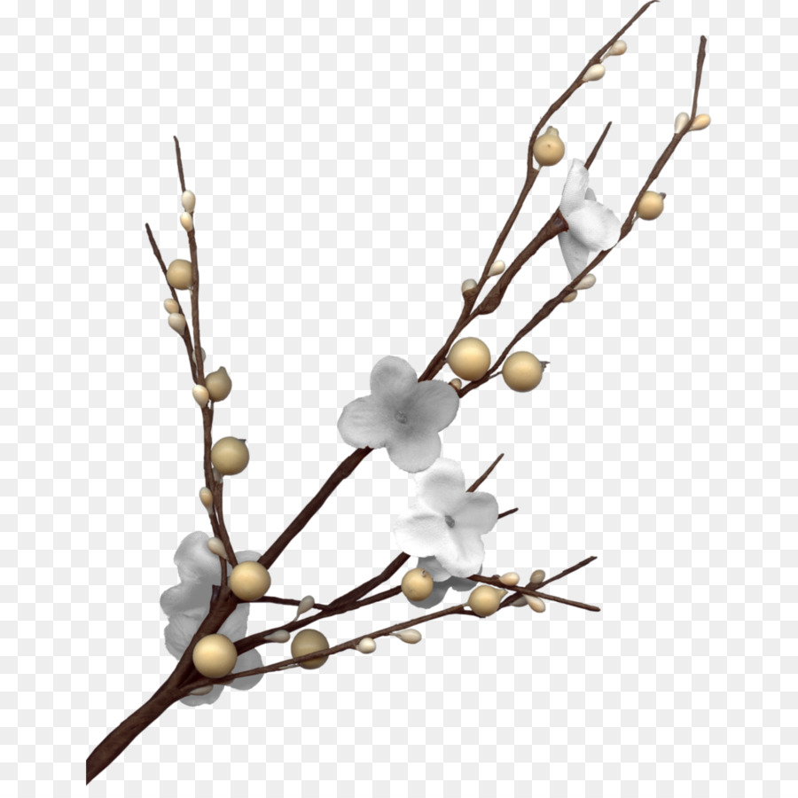 Plum Blossom Download White Plum Branches Png Download 10391024