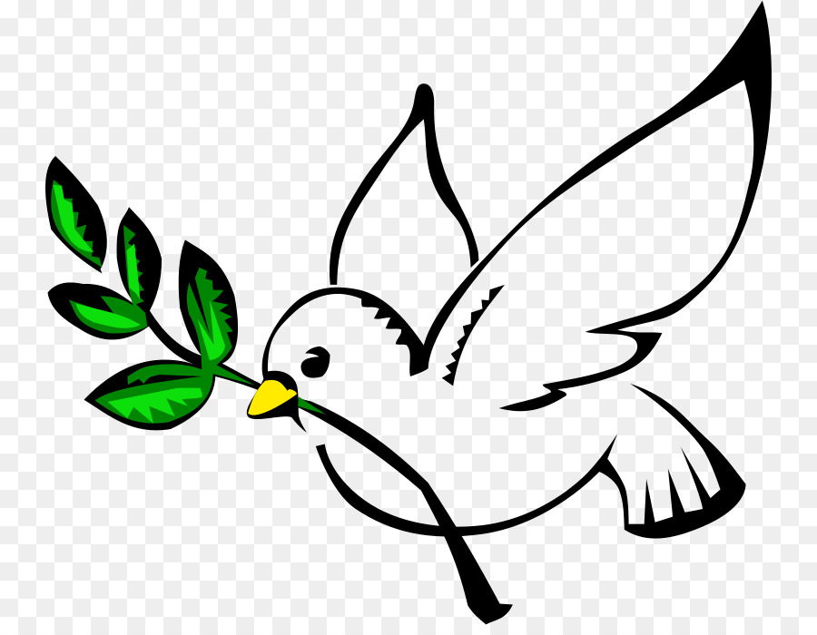 columbidae peace doves as symbols clip art pigeon cliparts png rh kisspng com dove clipart black and white dove clipart with olive branch free