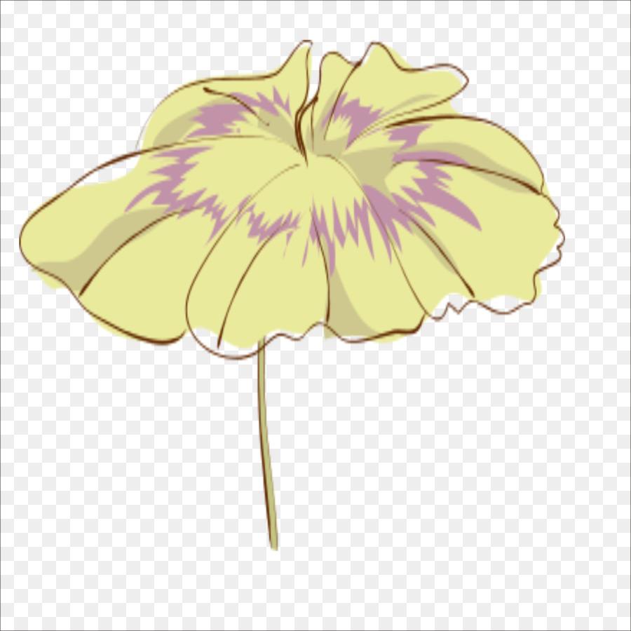 Desain Bunga Teratai Efek Nelumbo Nucifera Daun Teratai Unduh