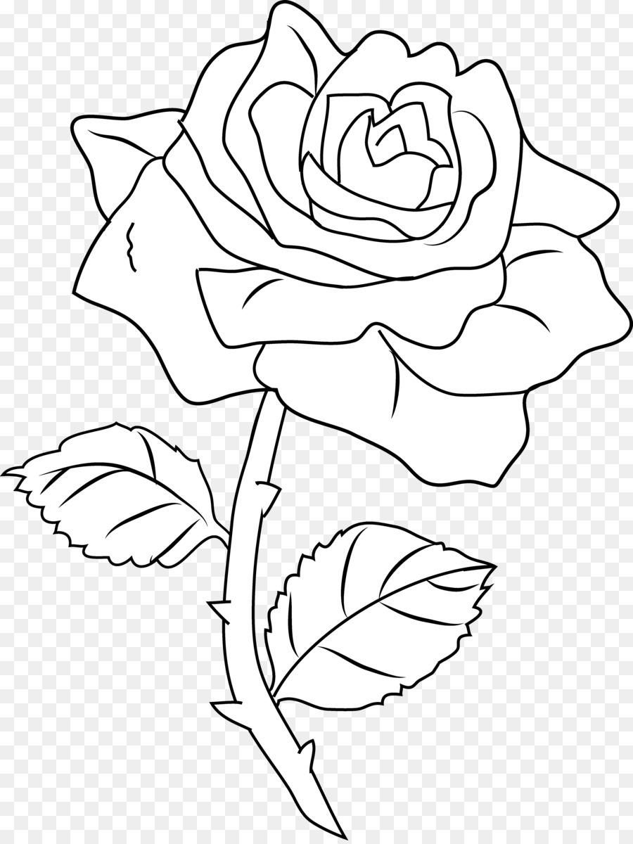 Line art Drawing Rose Coloring book Clip art - Black And White Roses ...