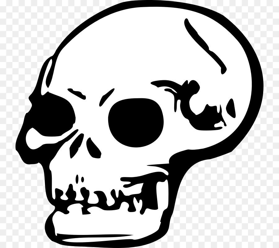 death skull clip art cartoon skull pictures png download 800 800 rh kisspng com  skeleton png clipart