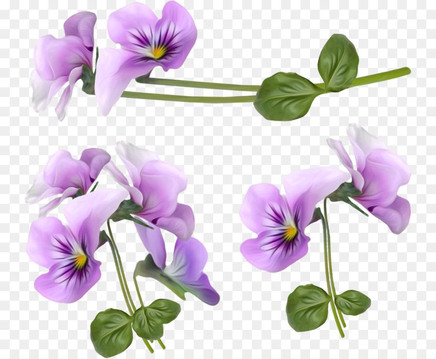 Flower Violet Clip art - Purple orchid decorative frame png download ...