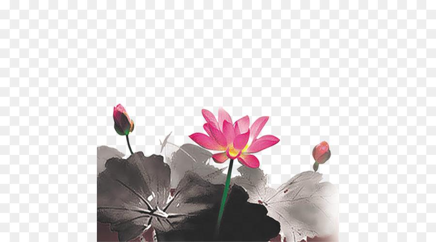 Tinta Mencuci Lukisan Nelumbo Nucifera Daun Teratai Unduh Pink