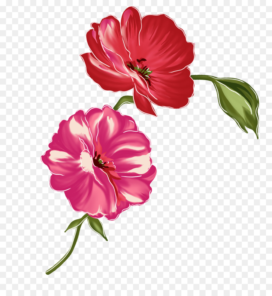 Flower Red - Watercolor flowers png download - 1026*1116 - Free ...