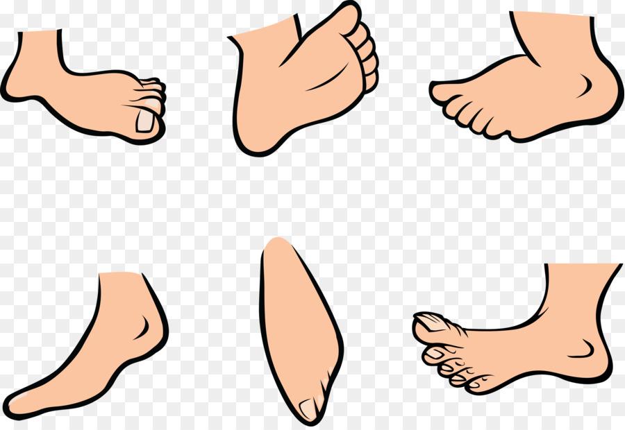 deb7b016184 Foot Cartoon Royalty-free Clip art - Funny Feet Cliparts png download -  2400 1641 - Free Transparent png Download.