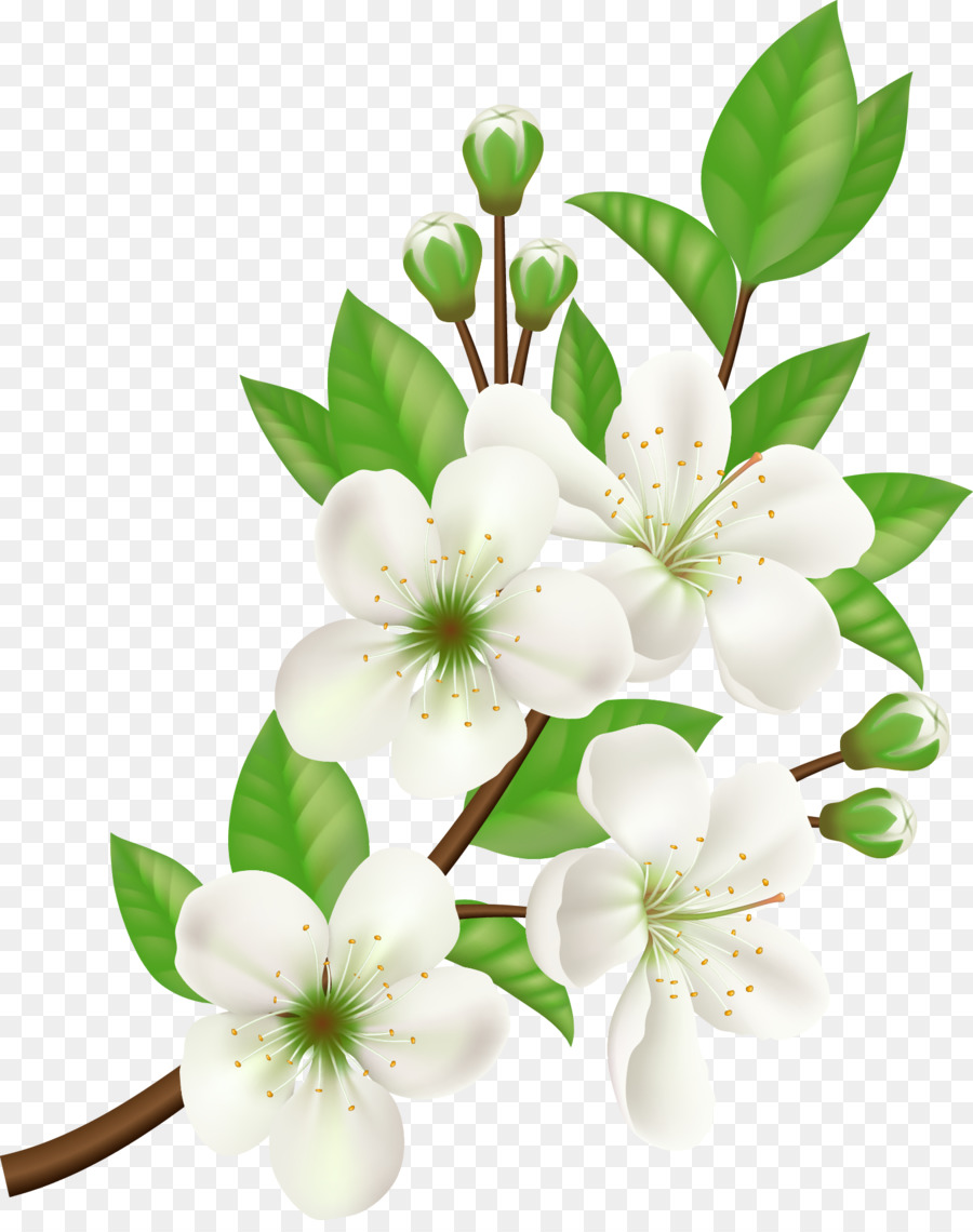 Royalty Free Computer Icons Flower Vector Hand Painted White