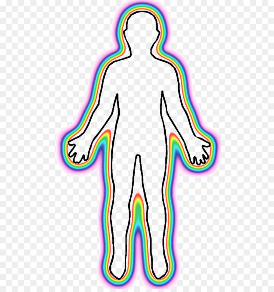 Cuerpo humano, el Homo sapiens sapiens figura Humana, Clip art - En ...