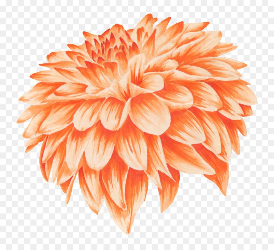 Orange flower petal golden yellow flowers png download 1024914 orange flower petal golden yellow flowers mightylinksfo