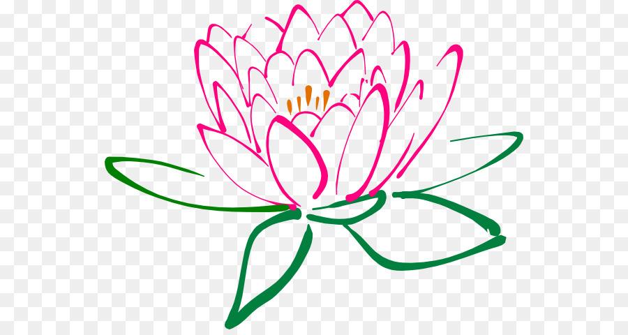 Nelumbo Nucifera Egyptian Lotus Flower Clip Art Lotus Blossom