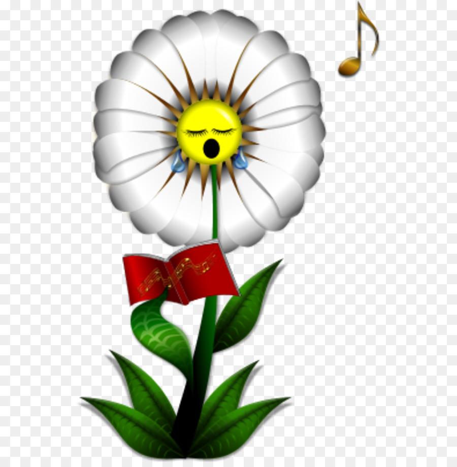 Flower Singing Common Daisy Clip Art Daisy Flower Outline Png